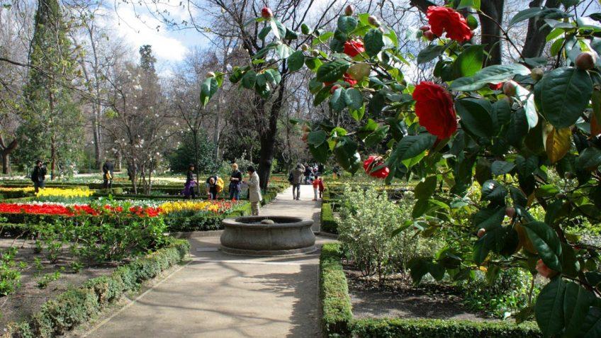 Vista del Jardín Botánico - Fontín circular.